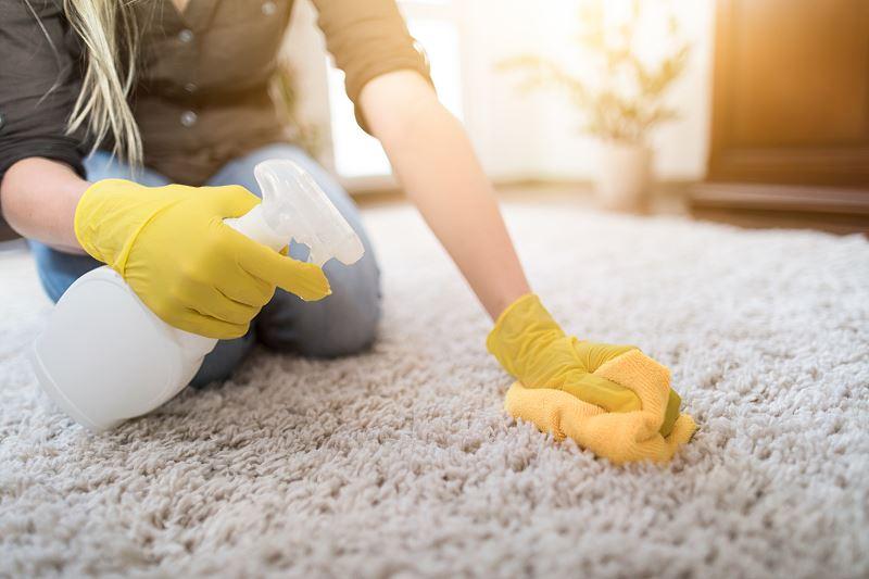 Jak usunąć plamy z dywanów