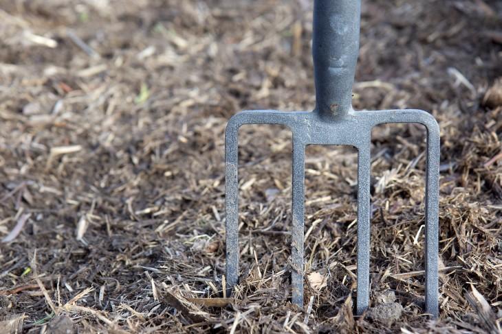 Zapomniane wapnowanie gleby