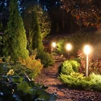 Jak oświetlić ogród?