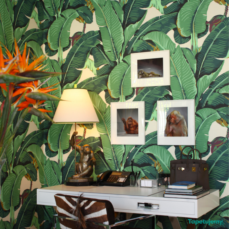 Wzór tropików – modny i ponadczasowy