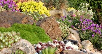 Ogrodowe skarpy