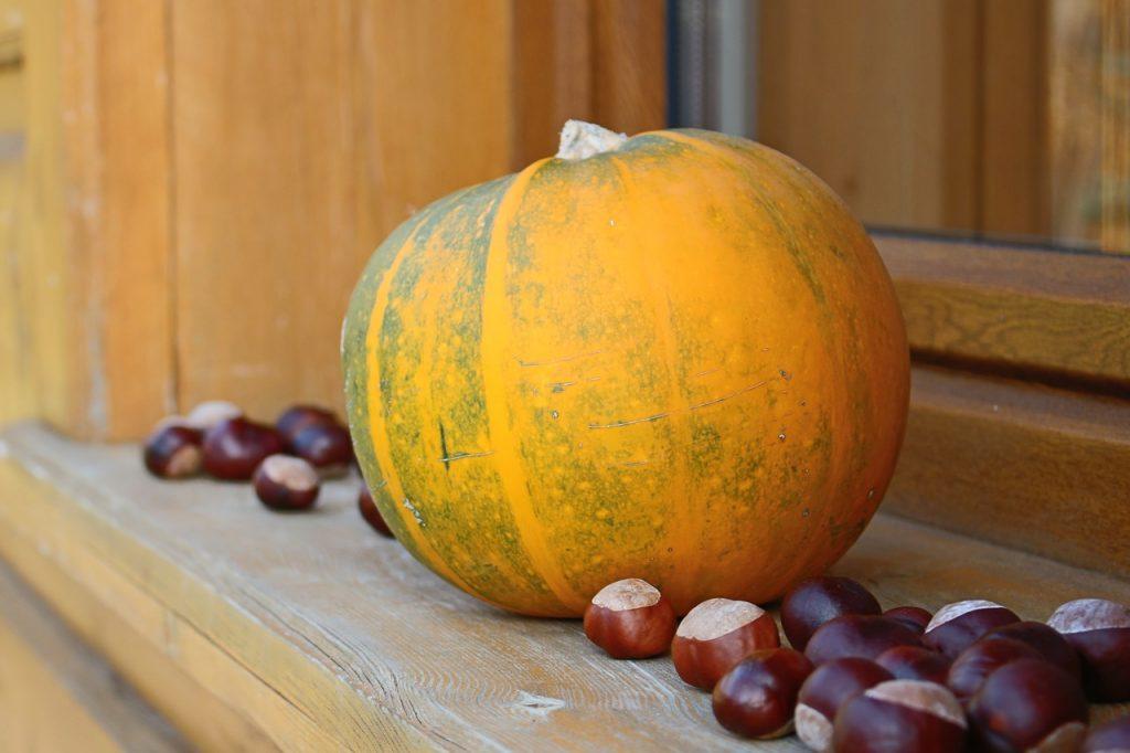 Dekoracje z plonów jesieni