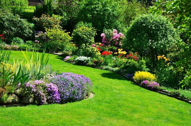 Wstępne ustalenia ogrodu