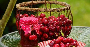 Drylownica do wiśni i czereśni