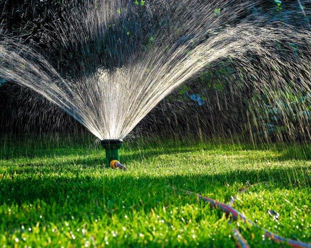 Jak podlać trawnik i się nie napracować