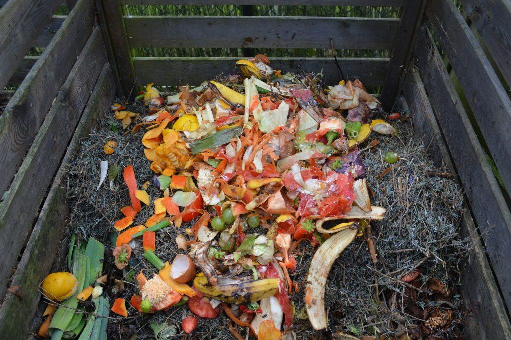 Kompost – nawóz naturalny
