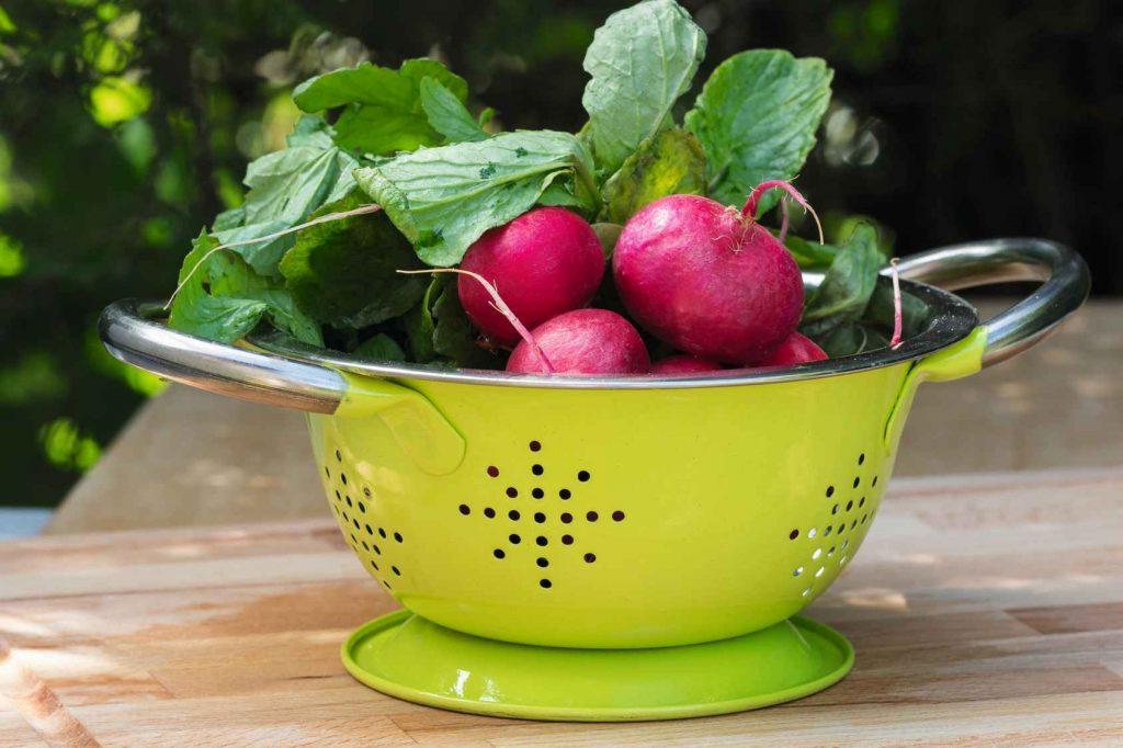 Zielona kuchnia na przekór jesieni i zimie