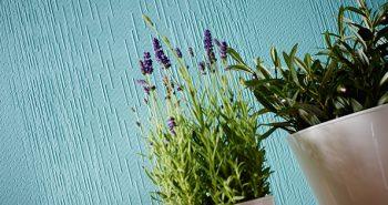 Tapety do malowania – efektowna odmiana wnętrza