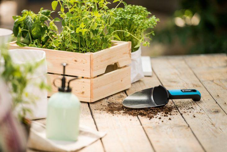 Drobne narzędzia ogrodnicze – łopatki, pazurki i motyczki