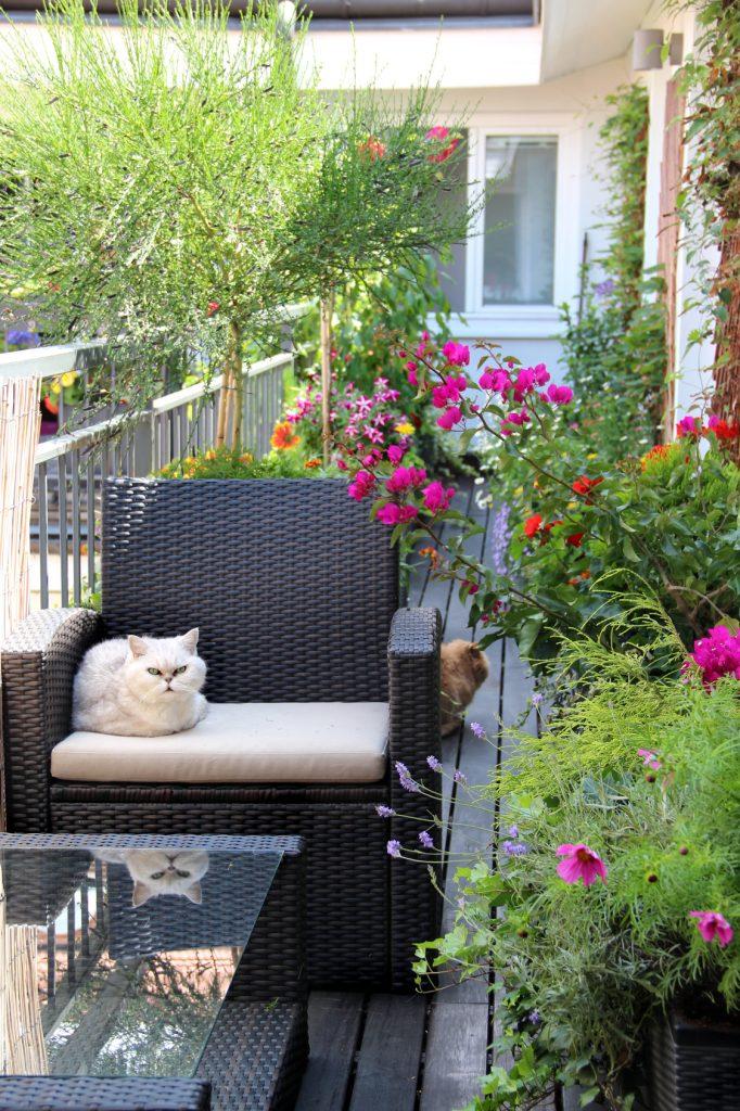 Na balkonie też może być życie!
