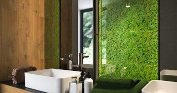 Mech chrobotek w łazience – na żywo i nie tylko