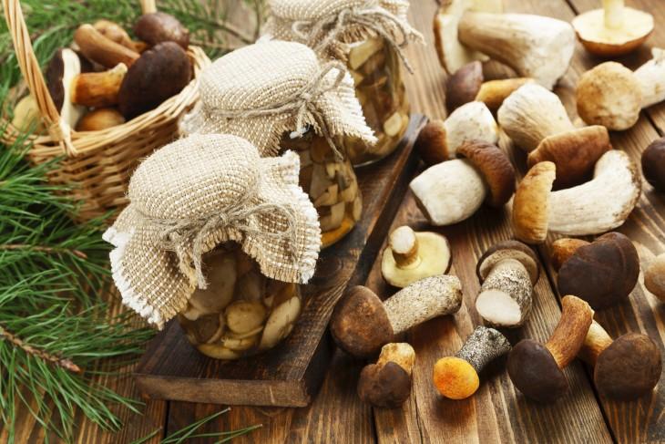 Grzyby na zapas – jak przechowywać grzyby