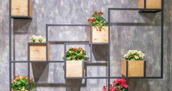 Nietypowa prezentacja roślin na ścianie