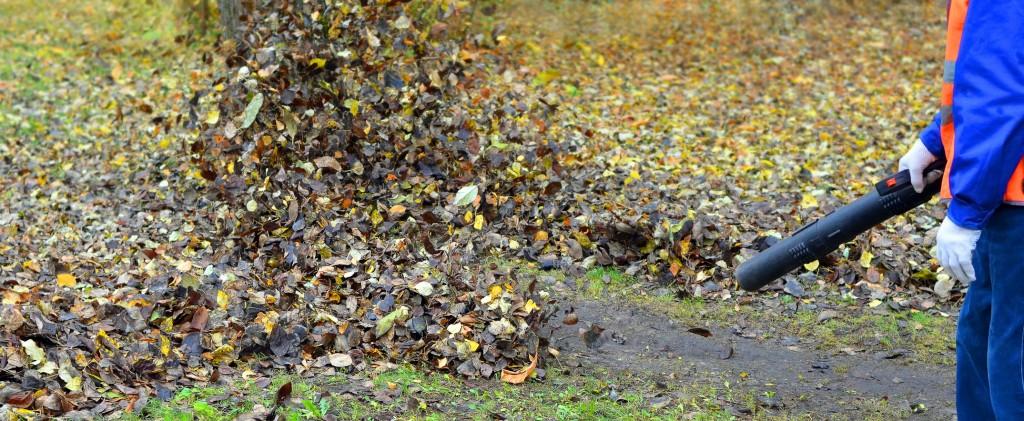 odkurzacz ogrodowy (fot. fotolia.com)