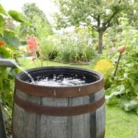 Jak zagospodarować deszczówkę