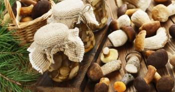 Jak przechowywać grzyby