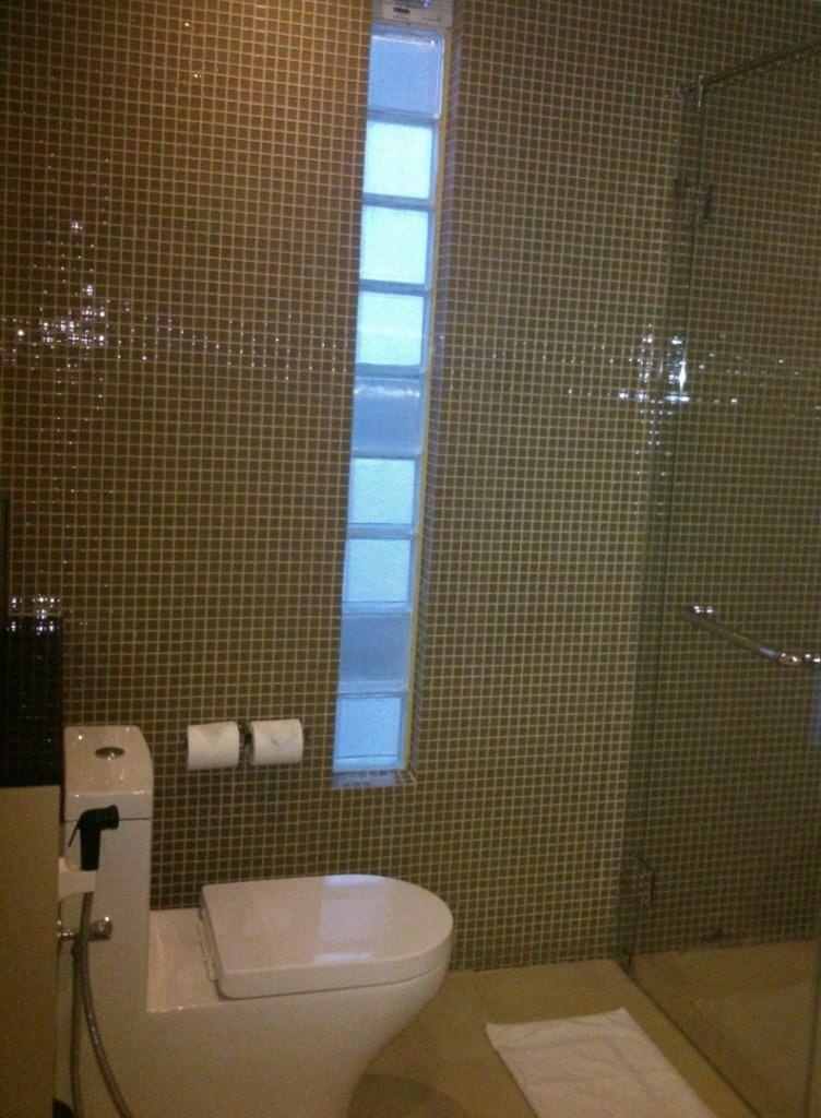Przeszklenia W ścianie łazienki