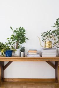 Modne aranżacje z roślinami