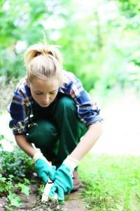 Przygotowania do sezonu prac w ogrodzie