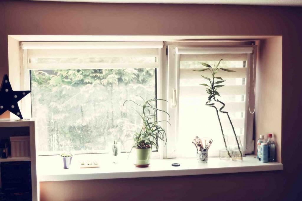 Okno w paski, czyli rolety zebra