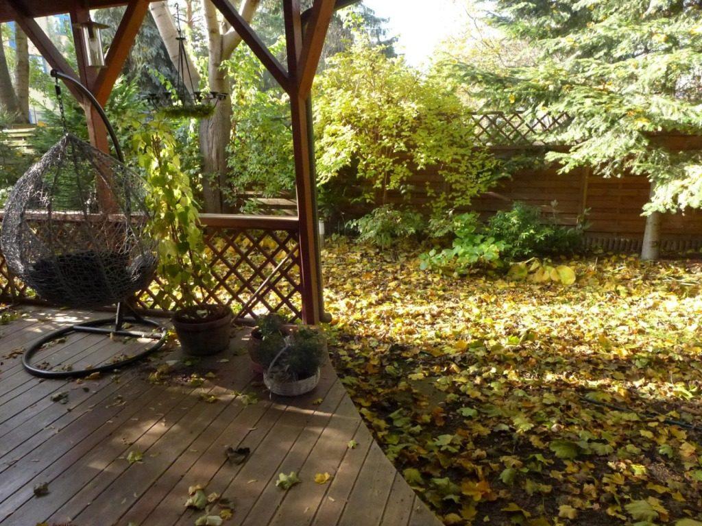 Jesienny ogród – chwilo trwaj!